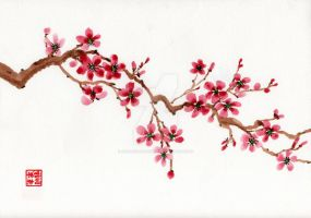 Plum Blossoms by Octavia-Drusilla