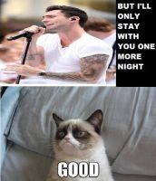 One More Night Grumpy Cat Meme by RosemarieAlexandra