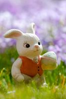 Easter Bunny 2014 by eastphoto99
