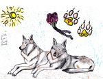 get well wolf-dogs by older14