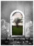 'The Door' by willblackwell