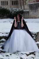 Ice queen stock 31 by Random-Acts-Stock