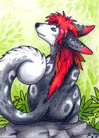 ACEO - Eleweth II by jrtracey