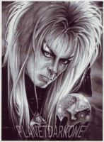 David B from LABYRINTH by PlanetDarkOne