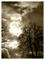 Skies will fall_sepia by halo8