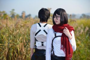 Attack on Titan Eren Jaegar and Mikasa Ackerman by Asuka10