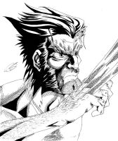 Logan The Wolverine by KingVego