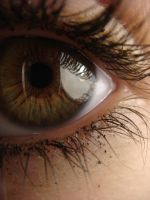 Eye Number Two. by Pugles
