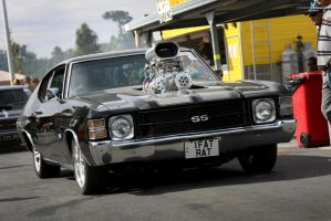 1Fat Rat Chevelle by RaynePhotography