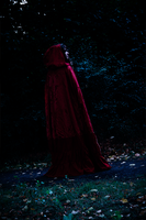 Red Riding Hood [Once Upon a Time] - Alone... by Sayuri-Shinichi