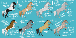 Designs Set 2 - Autobuy by painted-cowgirl