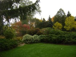 Canadian Fall Colours 40 by Aswang301