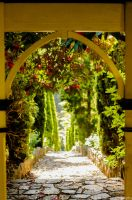 Arch View by insphere