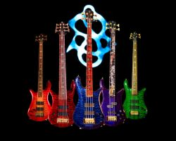 Spector Basses by puddlz