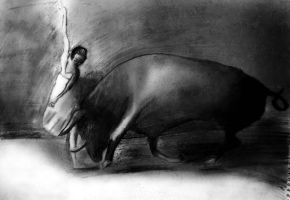 the bull and the ballerina by psychopathic-jad