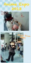 Anime Expo collage 2013 by TOM-CATS