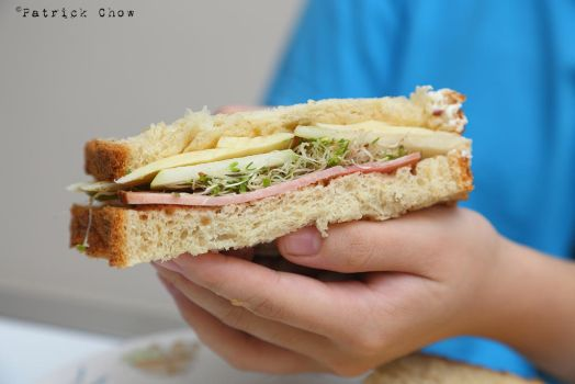 Ham and cheese sandwich 1 by patchow