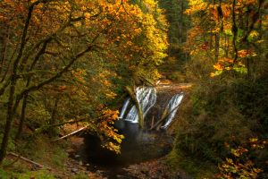 Lower North Falls Autumn by sivousplay