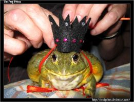 The Frog Prince by Toadychan