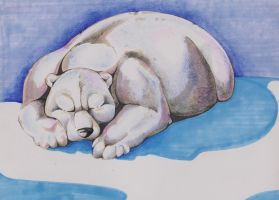 Polar Bear Sleepin by ElysianImagery