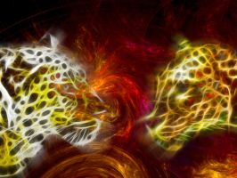 Leopards by Silrath