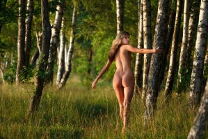 Among the trees by intst