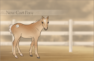 HIP #7 - New Coet Pony Adoptable by Yumpy