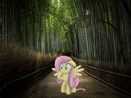 Alone at Bamboo Forest [PIRL] by AppleandMuffin