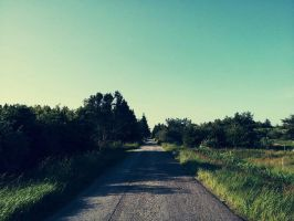 Where does the road lead? by Bio-Box