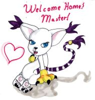 Welcome home master by Gokai-Chibi