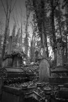 Highgate Cemetery II by neon-sunrise