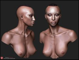 female bust texture test by mojette