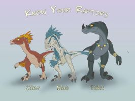 Know your raptors by SylxeriaGuardian