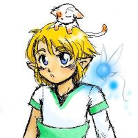 Link and a Cat by lorymayhiko