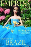 Fashion Cover 2011 - Brazil by angellus71