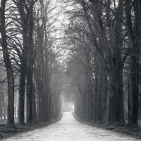 Path to Belvedere by kapanaga