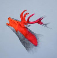 Call of the wild (2) by LouiseMcNaught