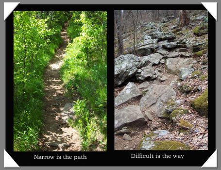 Narrow is the path by buckwithluck