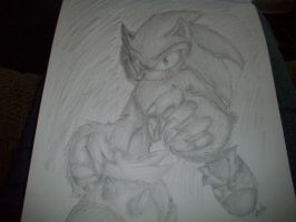 Sonic the Werehog by MoonTiger456