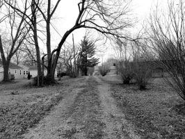 The Road Not Taken by AMartin17