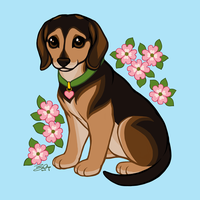 Esther Loves Dogwood by Sobii