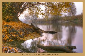 Hungarian autumn river by Lurvig01