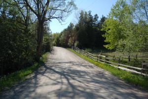 country road 5904 by stocklove