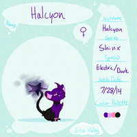 Halcyon Ref by animose