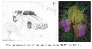 My Skill Progess 2007-2013 by Miss-A-sketches