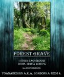 Forest Grave by bonbonka