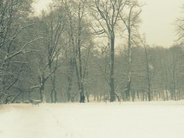 ordinary snowy day: in the park by snusmumrikenn