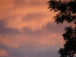Twilight Orange Clouds Sky 08 by FantasyStock