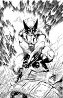 Wolverine by Brett Booth inks. by IanDSharman