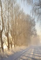 Winter landscape 5 by ThereseBorg